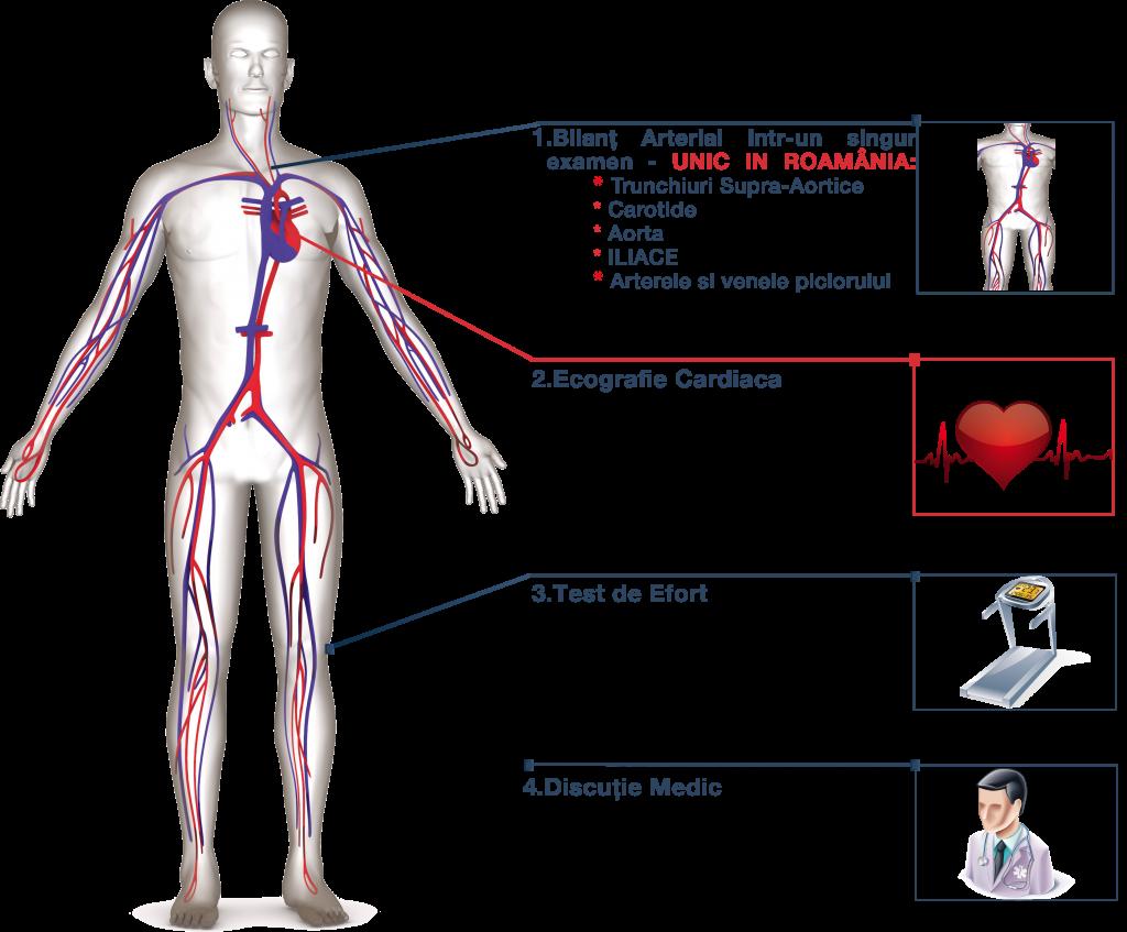 Prevenție Cardiovasculara