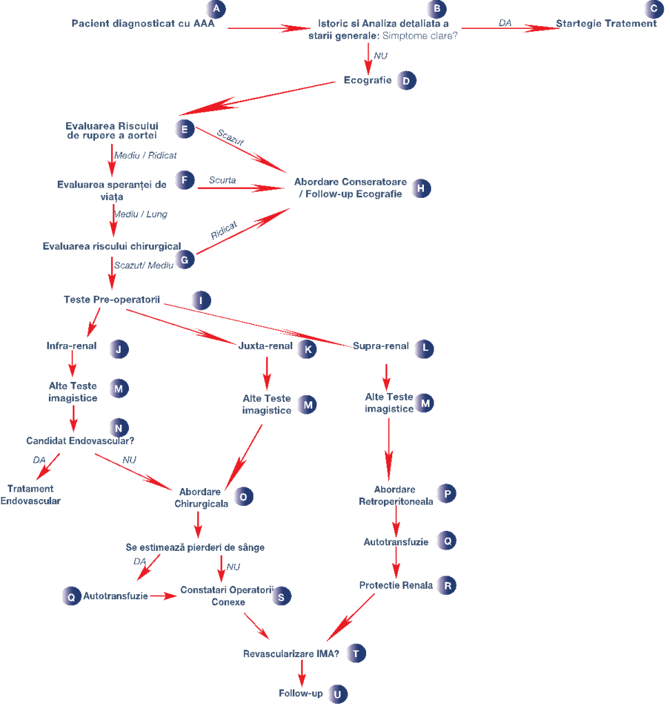 Exemplu detaliat pentru diagnosticul Anevrismului Aortic Abdominal